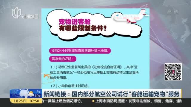 """[视频]国内部分航空公司试行""""客舱运输宠物""""服务"""