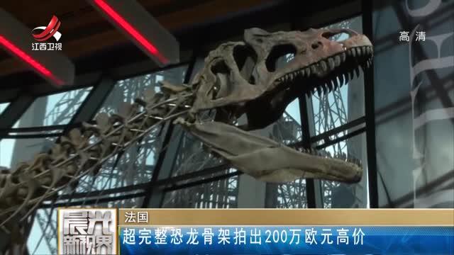 [视频]法国:超完整恐龙骨架拍出200万欧元高价