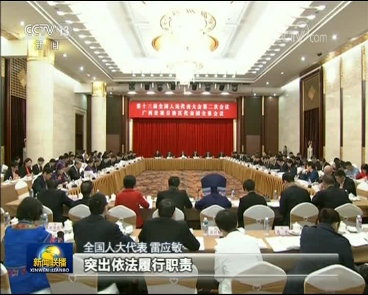 [视频]【在习近平新时代中国特色社会主义思想指引下——代表委员议国是】人大工作依法履职开新篇