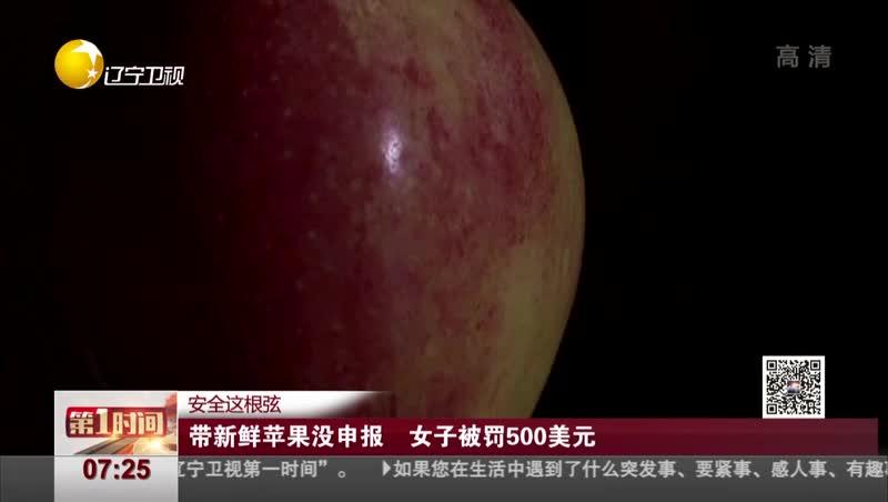 [视频]带新鲜苹果没申报 女子被罚500美元
