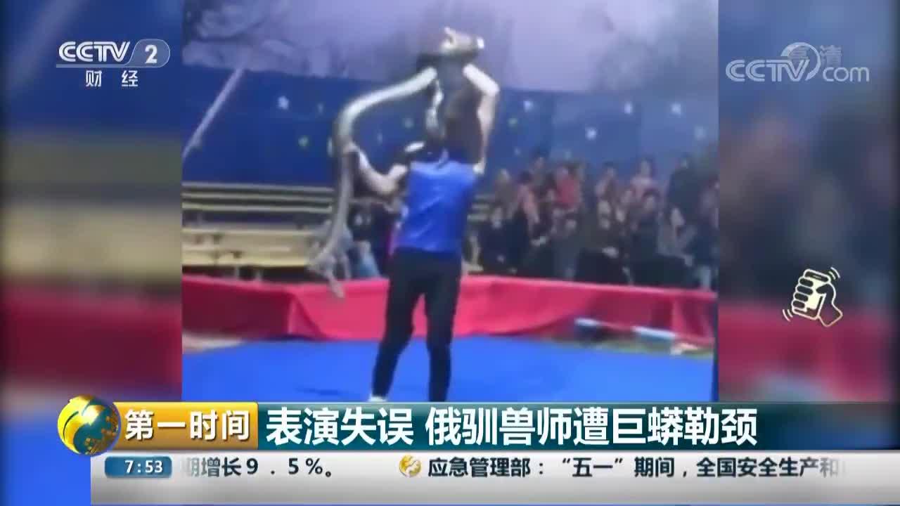 [视频]表演失误 俄驯兽师遭巨蟒勒颈