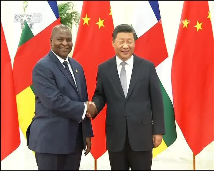 [视频]习近平会见中非总统