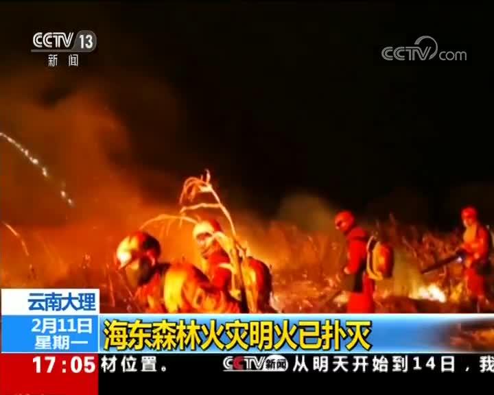 [视频]云南大理 海东森林火灾明火已扑灭
