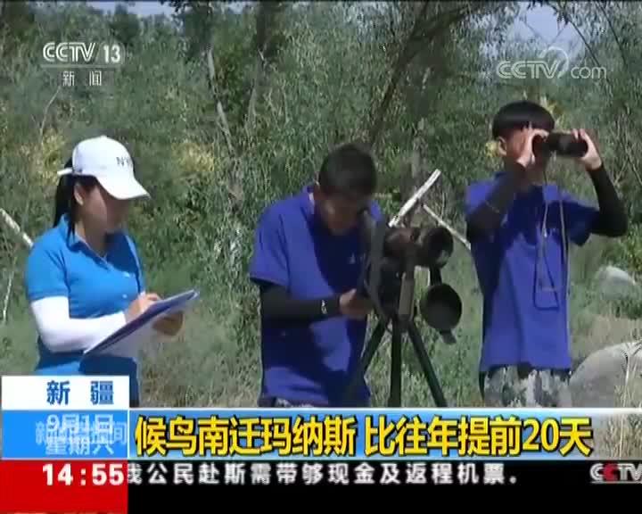 [视频]新疆 候鸟南迁玛纳斯 比往年提前20天