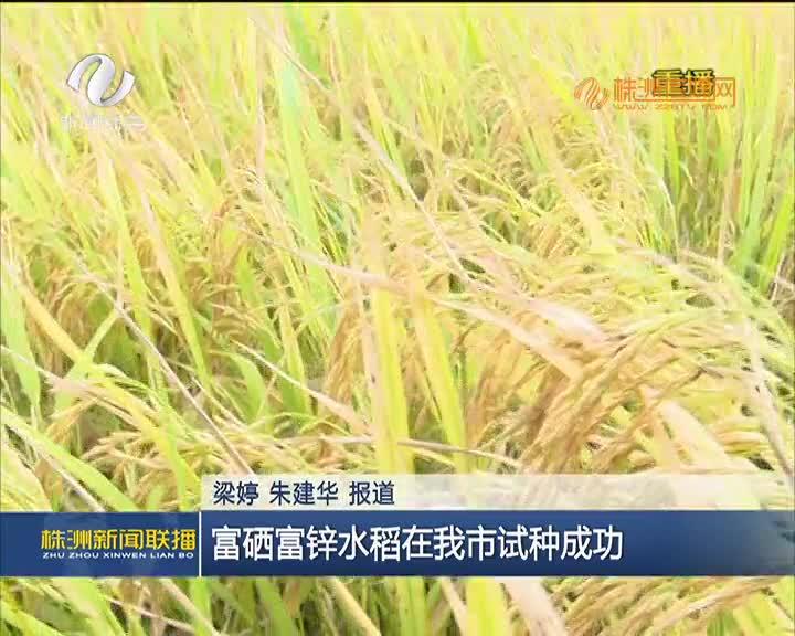 富硒富锌水稻在我市试种成功