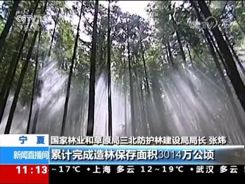 [视频]三北防护林工程实施40年 累计治理沙化土地33.6万平方公里