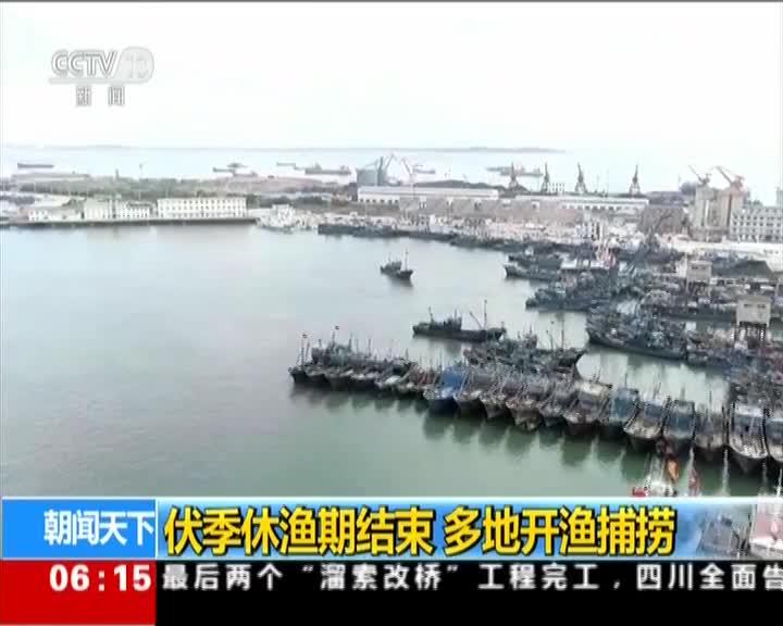 [视频]多地开渔捕捞·山东 休渔期结束 渔民出海捕捞