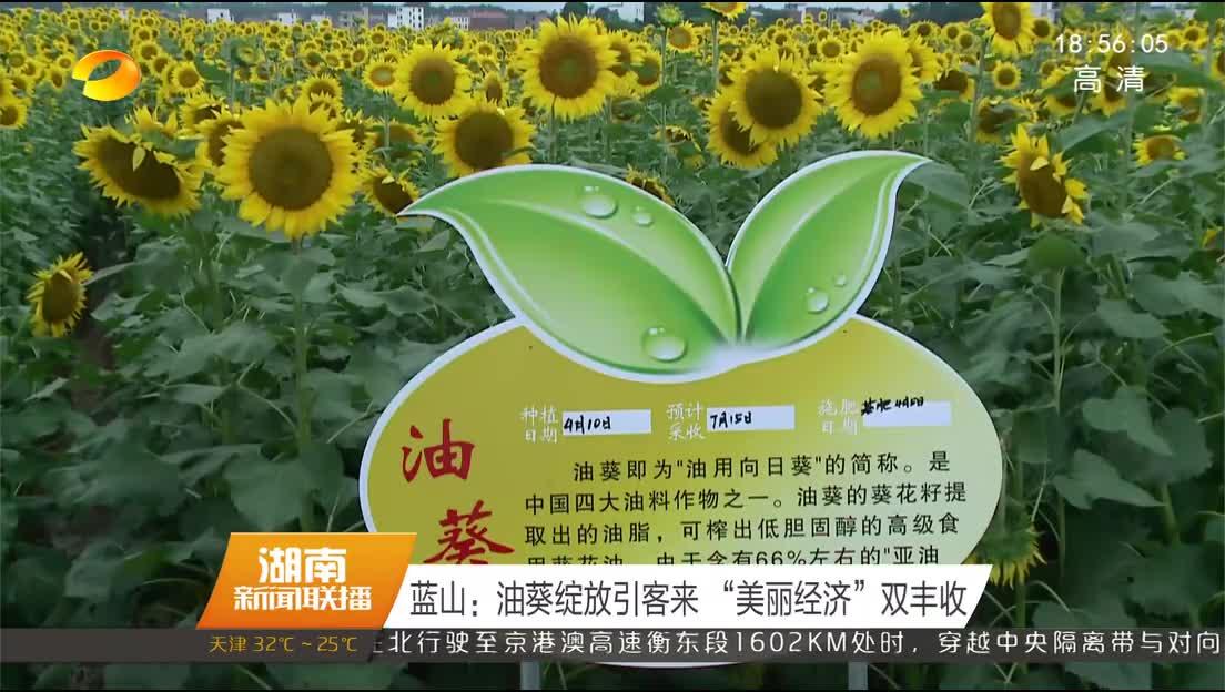 2018年06月30日湖南新闻联播