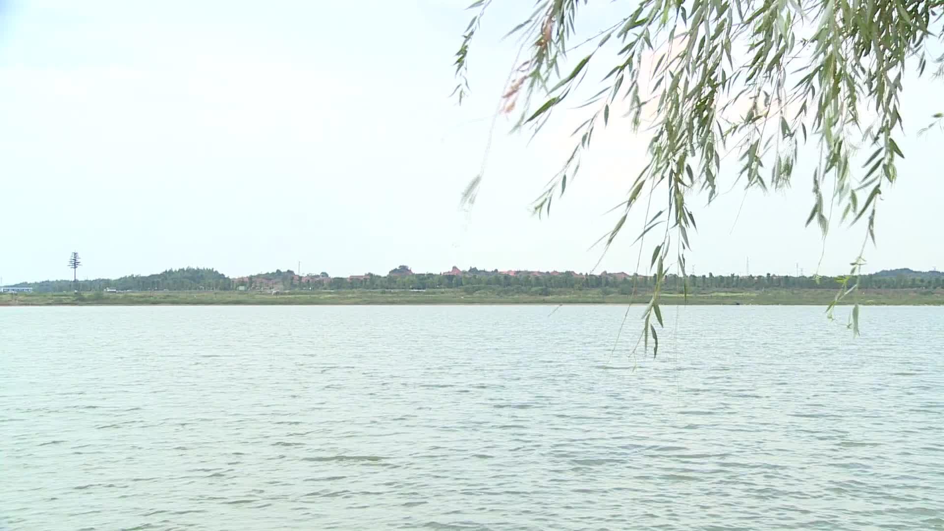 2017年 湖南全省地表水水质总体为优
