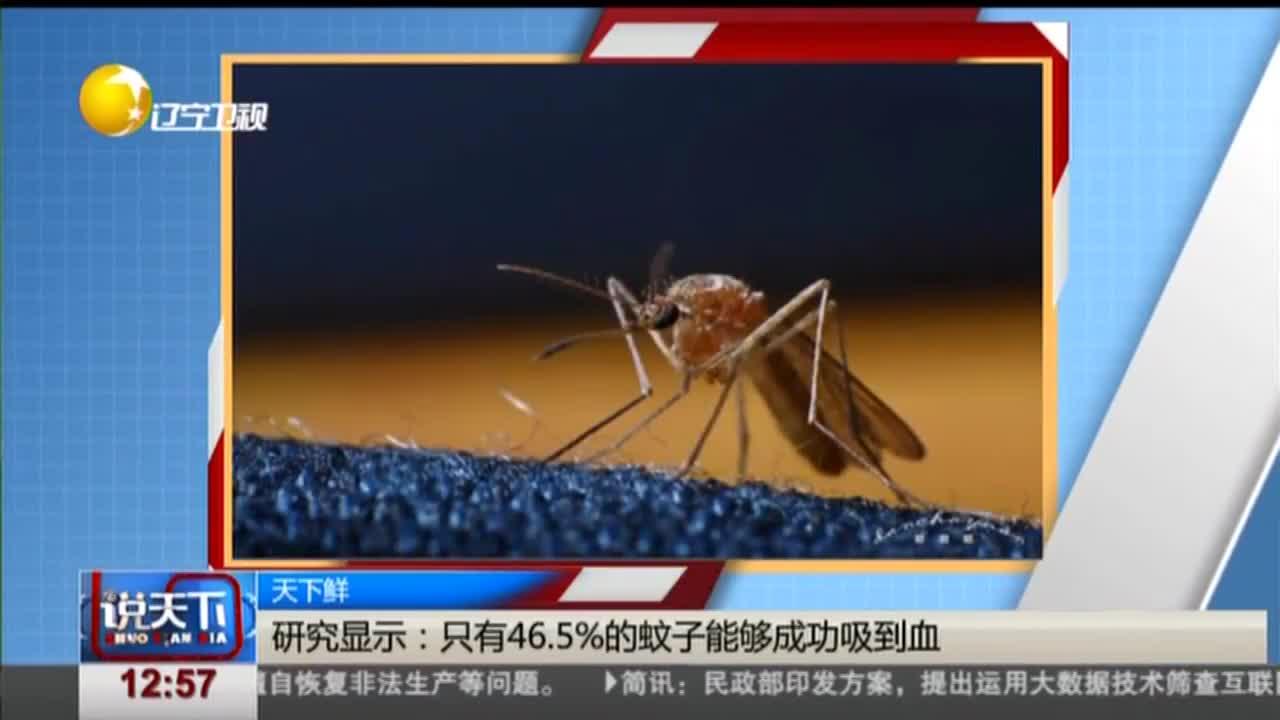 [视频]研究显示:只有46.5%的蚊子能够成功吸到血