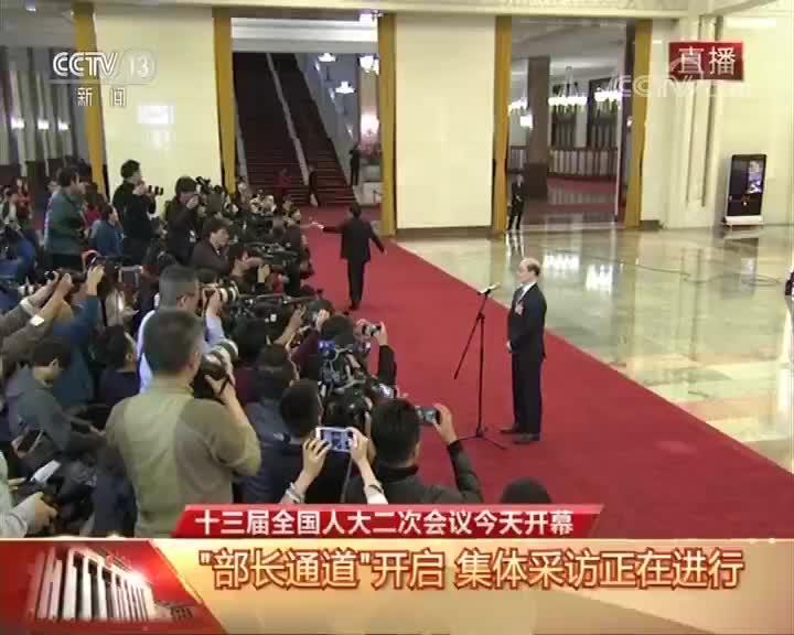 """[十三届全国人大二次会议开幕会]""""部长通道"""" 香港中评社记者向国务院台湾事务办公室主任刘结一提问"""