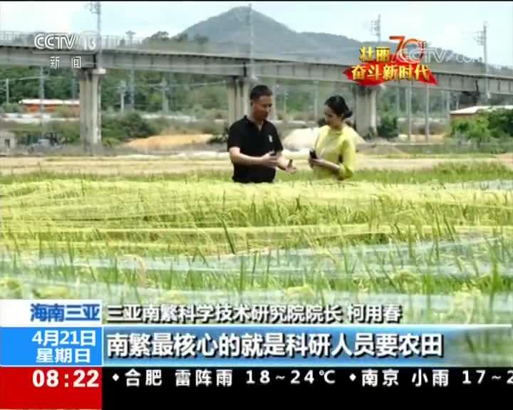 [视频]壮丽70年 奋斗新时代 南繁基地:建设中国种业硅谷
