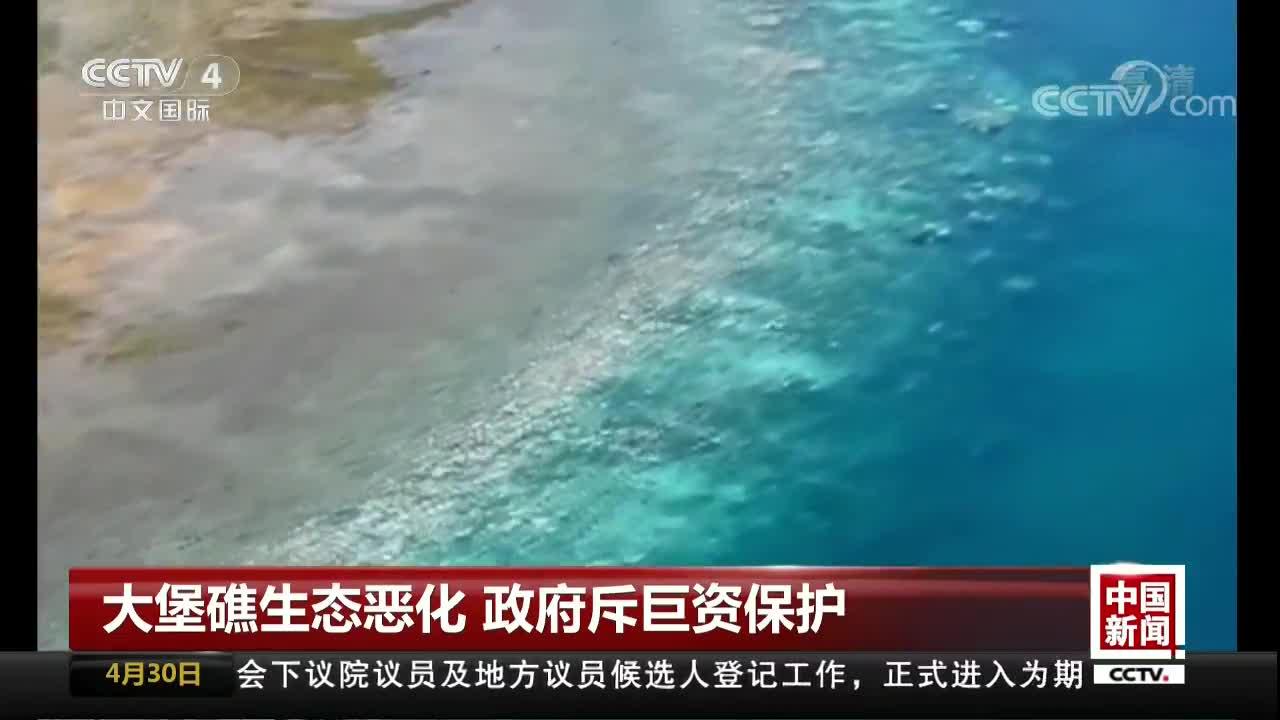 [视频]大堡礁生态恶化 政府斥巨资保护
