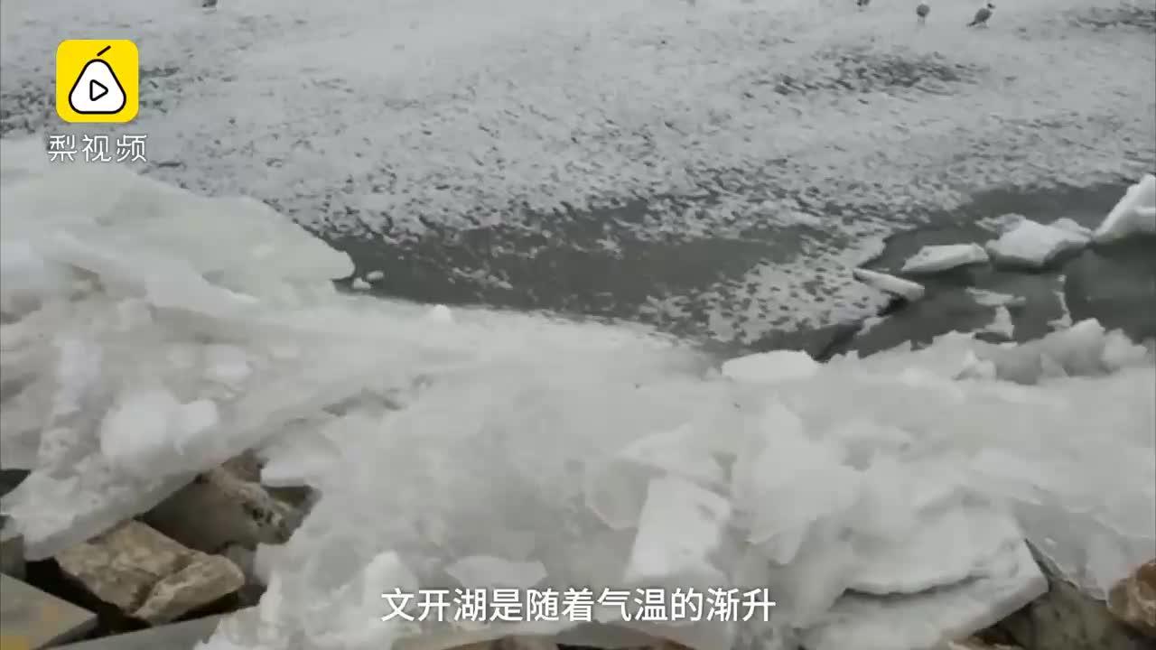 [视频]西海龙王阅兵?青海湖开湖场面壮观