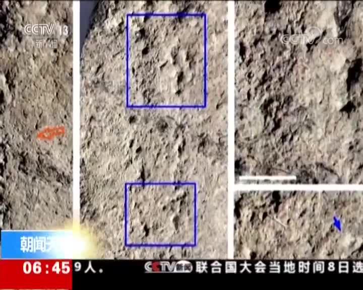 [视频]科学家发现地球最古老足迹化石