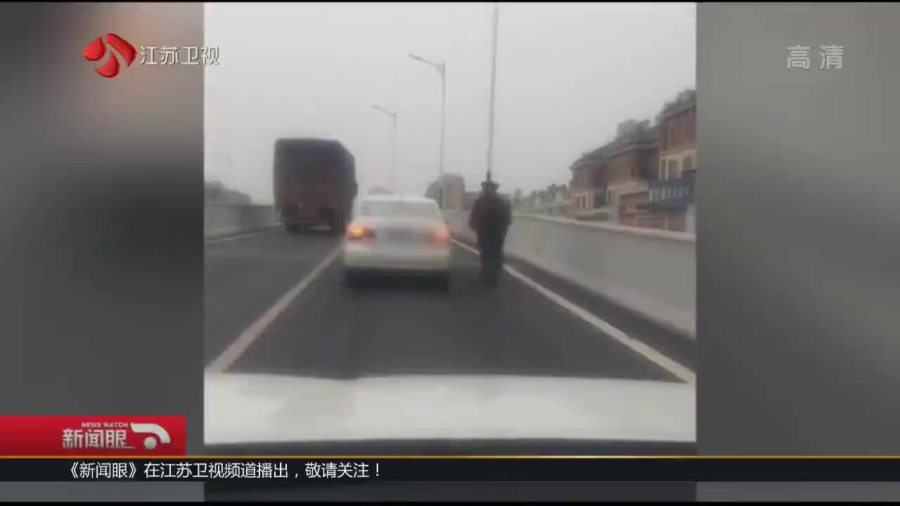 [视频]高架桥上开车遛马 交警:罚200元记2分
