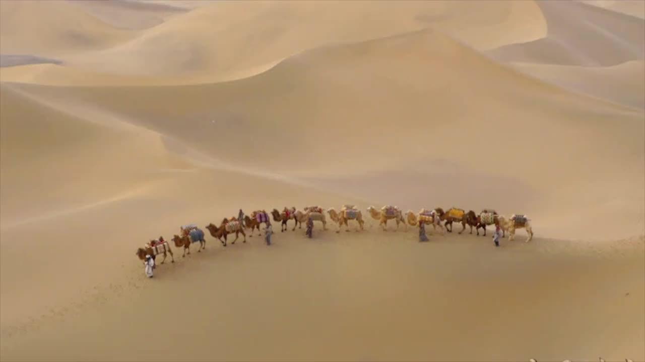 [视频]一带一路,美美与共