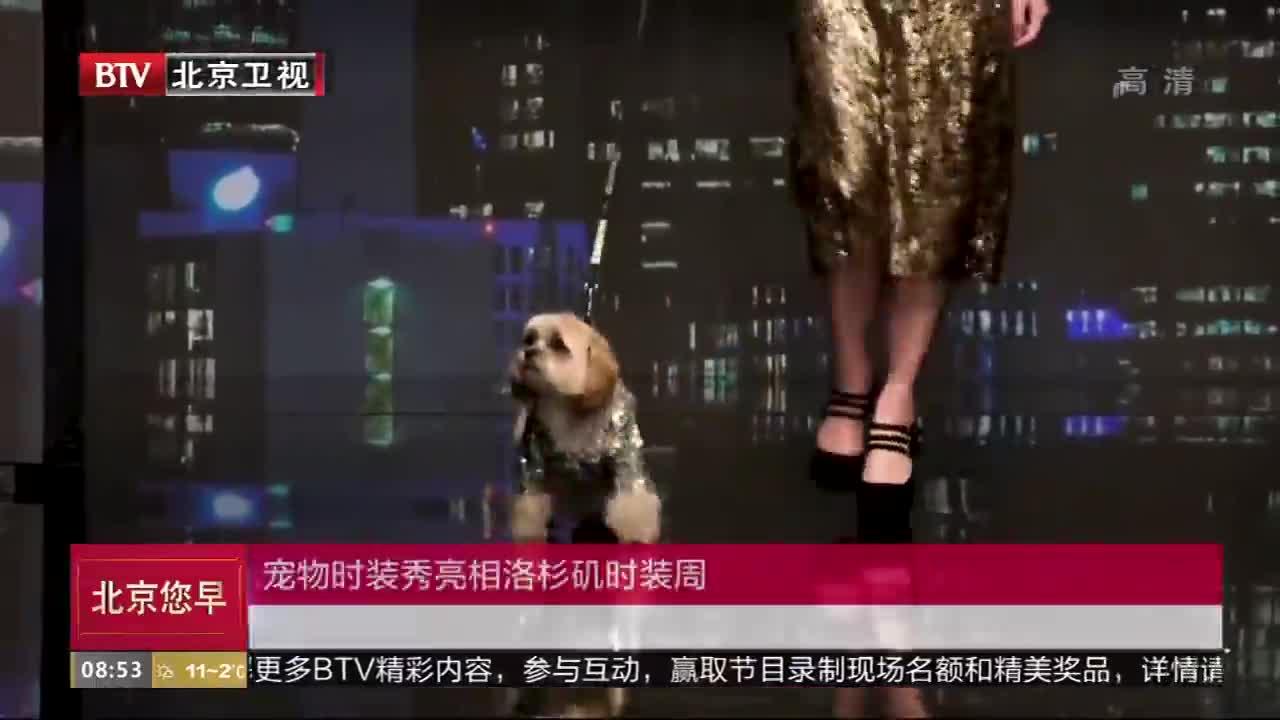 [视频]宠物时装秀亮相洛杉矶时装周