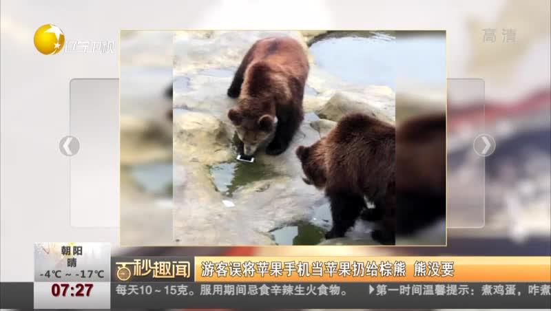 [视频]游客误将苹果手机当苹果扔给棕熊 熊没要