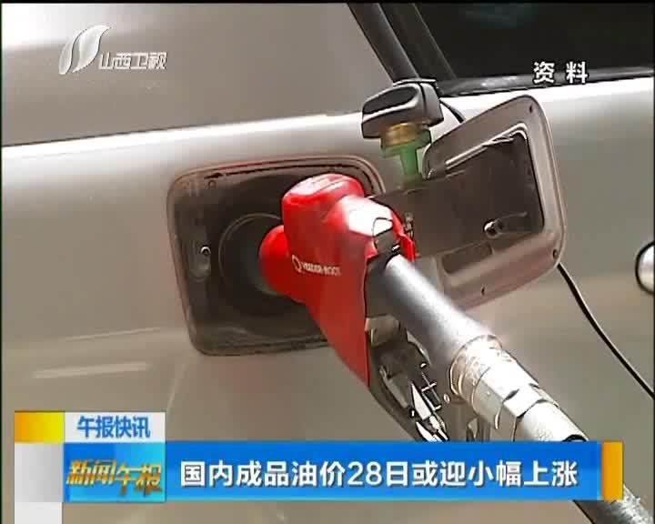 [视频]国内成品油价28日或迎小幅上涨