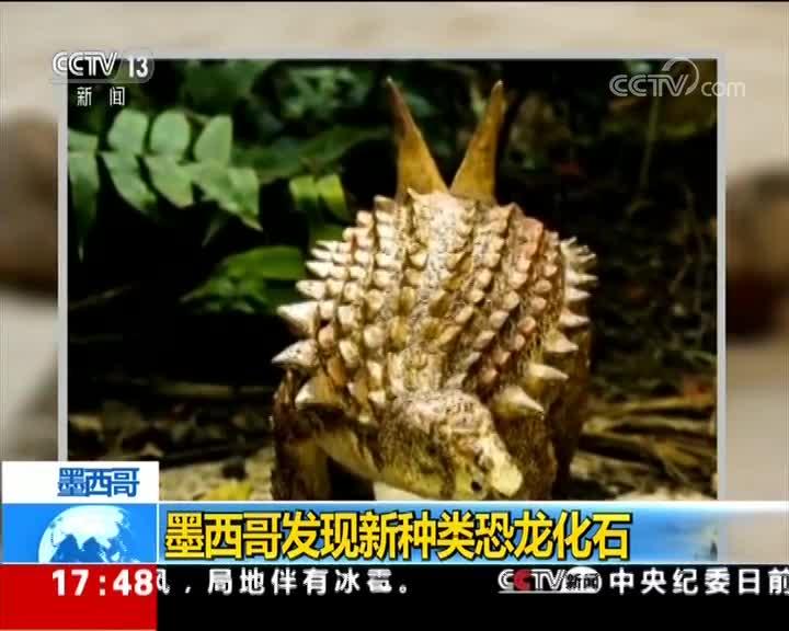 [视频]墨西哥发现新种类恐龙化石