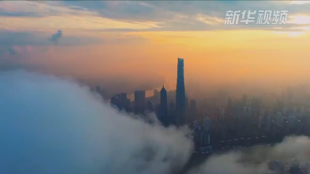 [视频]从广交会到进博会——中国对外开放再谱新乐章