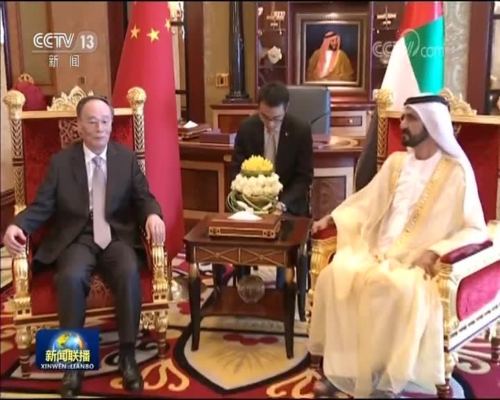 [视频]王岐山访问阿联酋