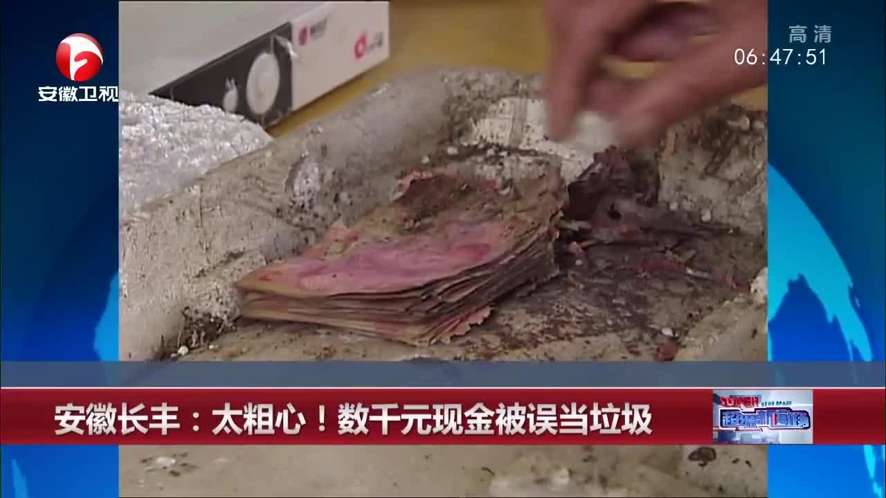 [视频]安徽长丰:太粗心!数千元现金被误当垃圾