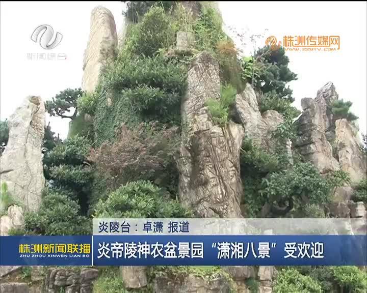 """炎帝陵神农盆景园""""潇湘八景""""受欢迎"""