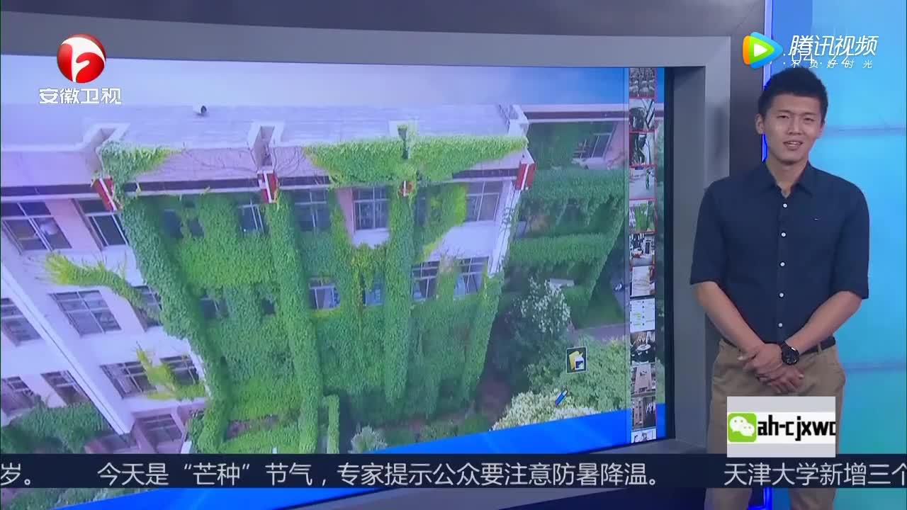 """[视频]河南郑州爬山虎爬满建筑 图书馆变""""空调房"""""""