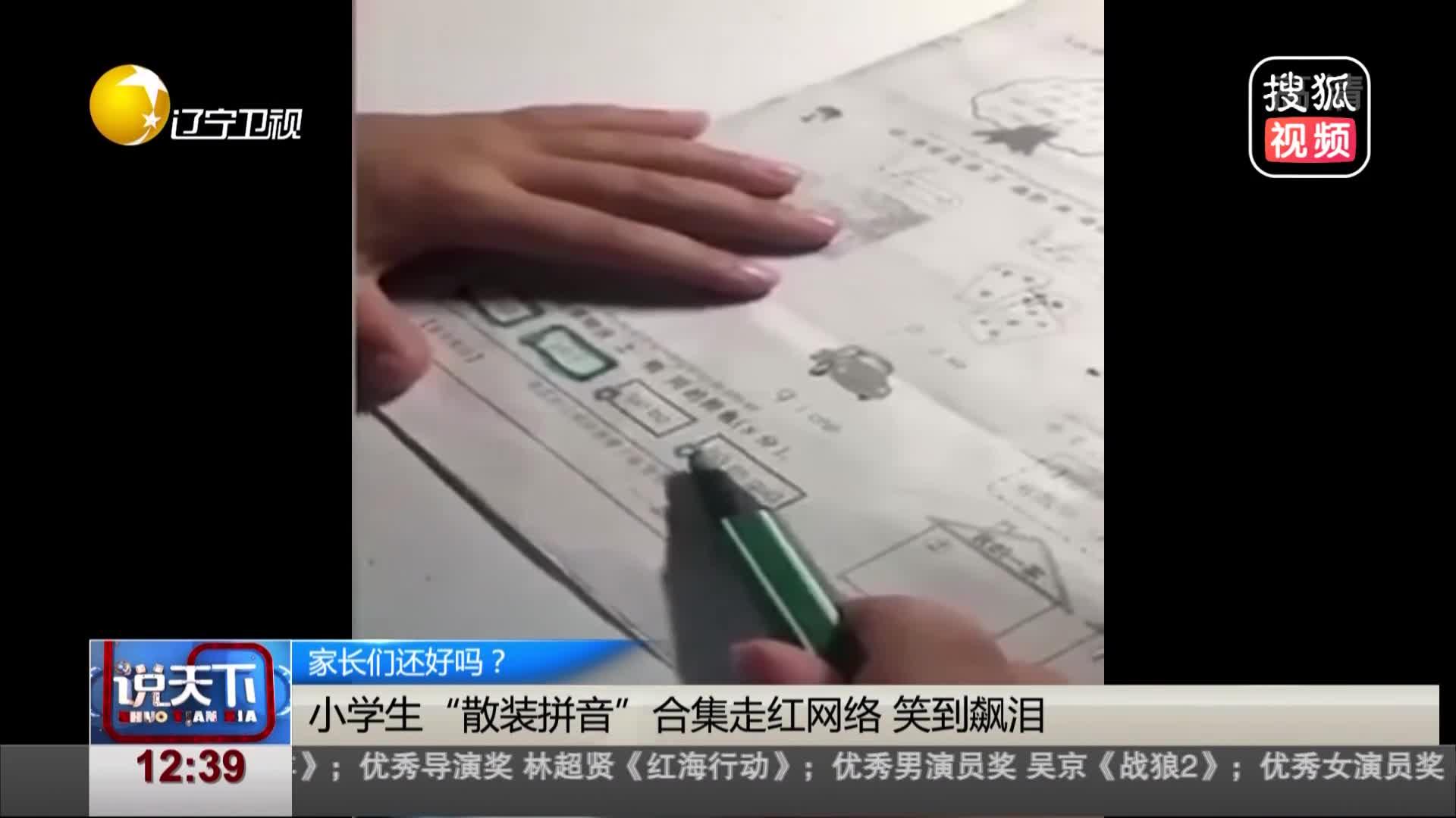 """[视频]小学生""""散装拼音""""合集走红网络 笑到飙泪"""