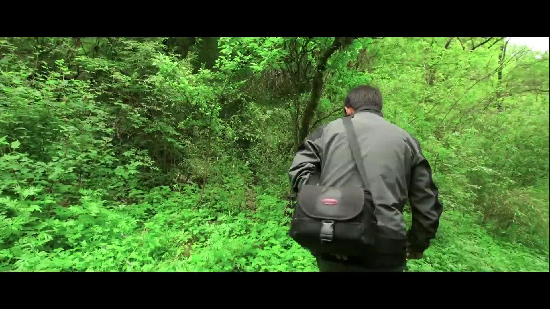 [视频]《宁夏故事》:绿水青山间的独行者
