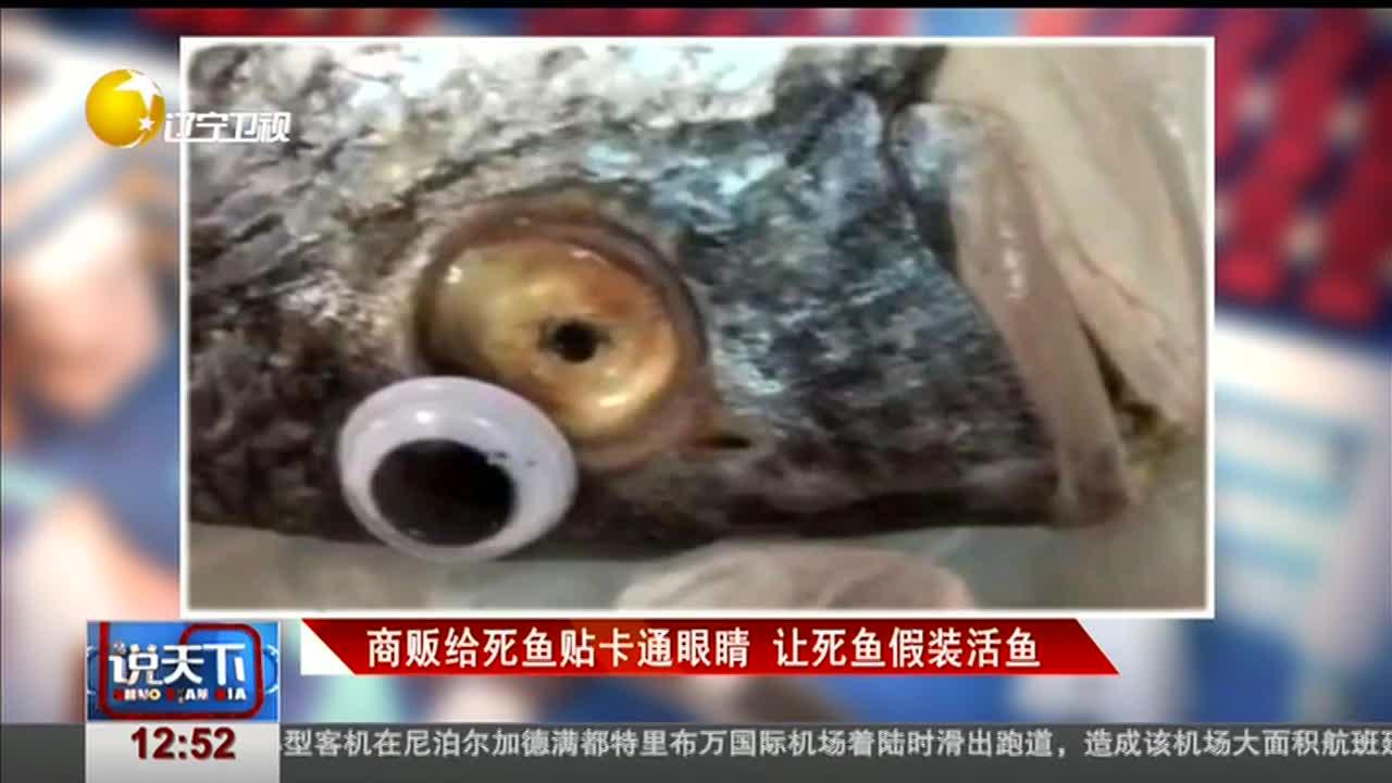 [视频]商贩给死鱼贴卡通眼睛 让死鱼假装活鱼