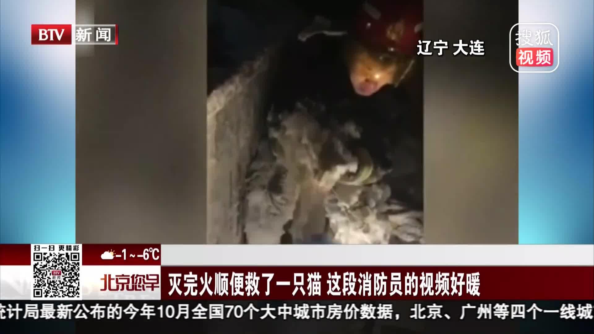 [视频]消防员灭火后全身挂起冰棱 顺手解救小猫全程安慰
