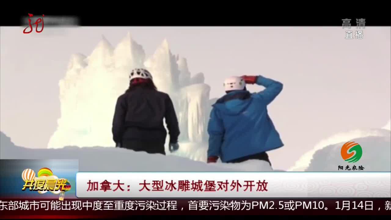 [视频]加拿大:大型冰雕城堡对外开放