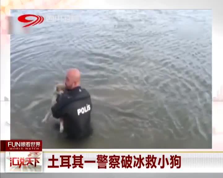 [视频]土耳其一警察破冰救小狗