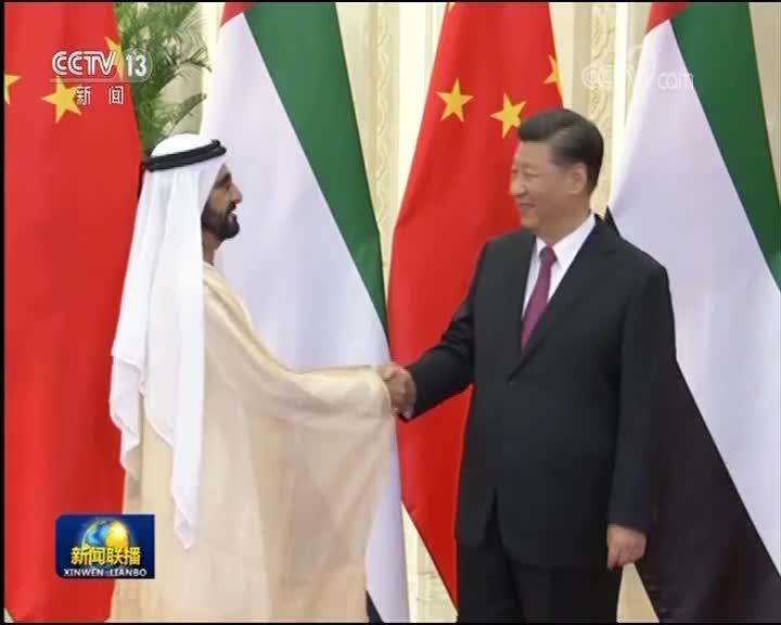 [视频]习近平会见阿联酋副总统兼总理 迪拜酋长
