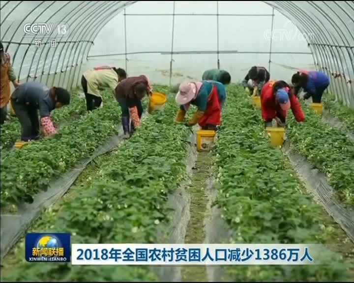[视频]2018年全国农村贫困人口减少1386万人