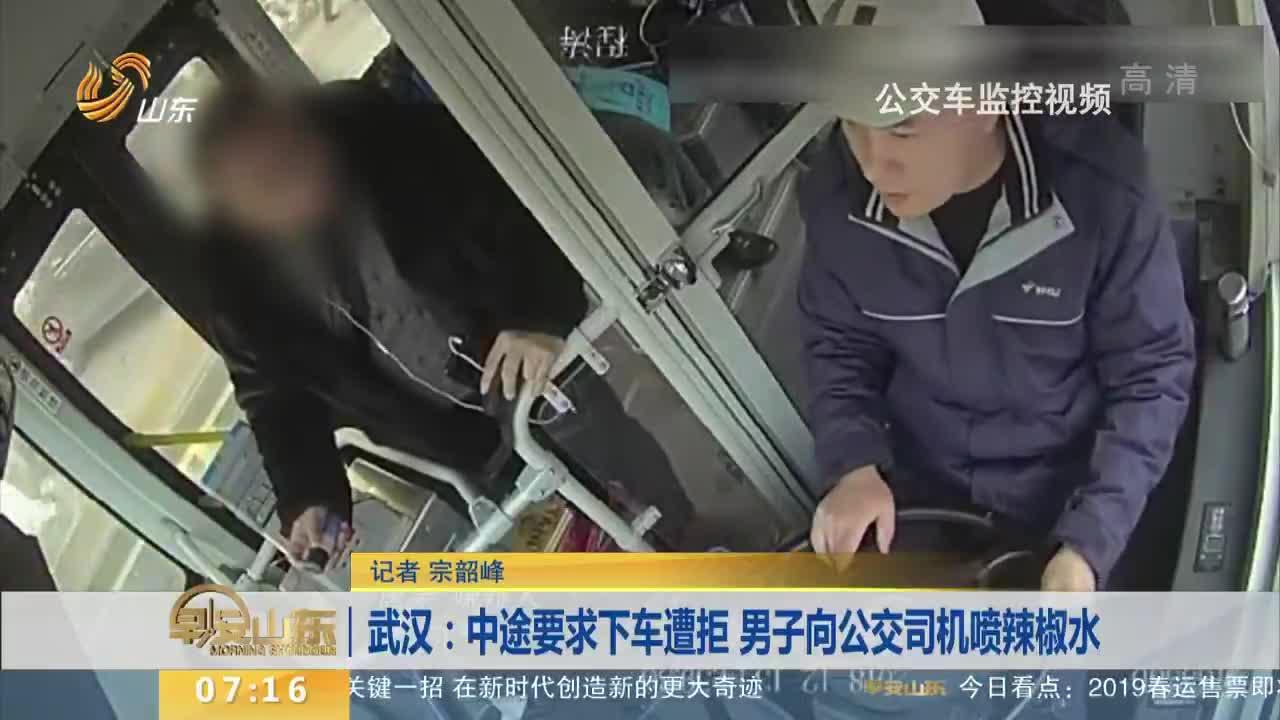 [视频]中途要求下车遭拒 男子向公交司机喷辣椒水