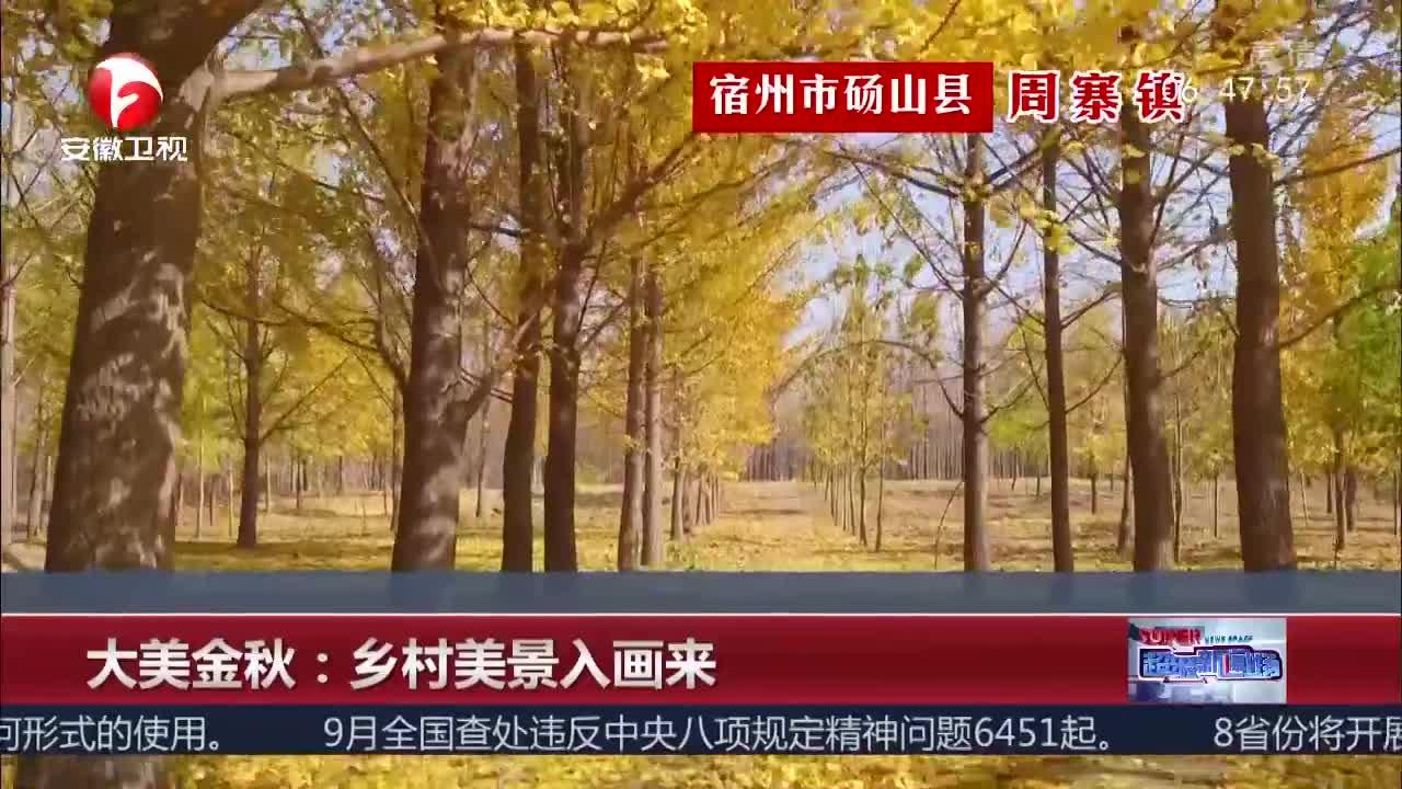 [视频]大美金秋:乡村美景入画来