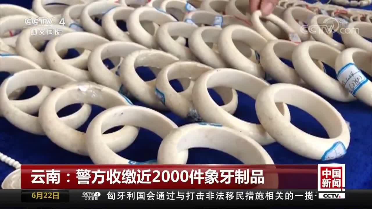 [视频]云南:警方收缴近2000件象牙制品