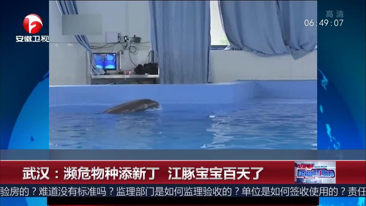 [视频]武汉:濒危物种添新丁 江豚宝宝百天了