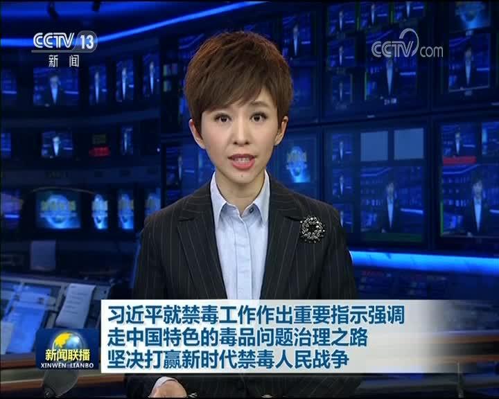 [视频]习近平就禁毒工作作出重要指示强调 走中国特色的毒品问题治理之路 坚决打赢新时代禁毒人民战争