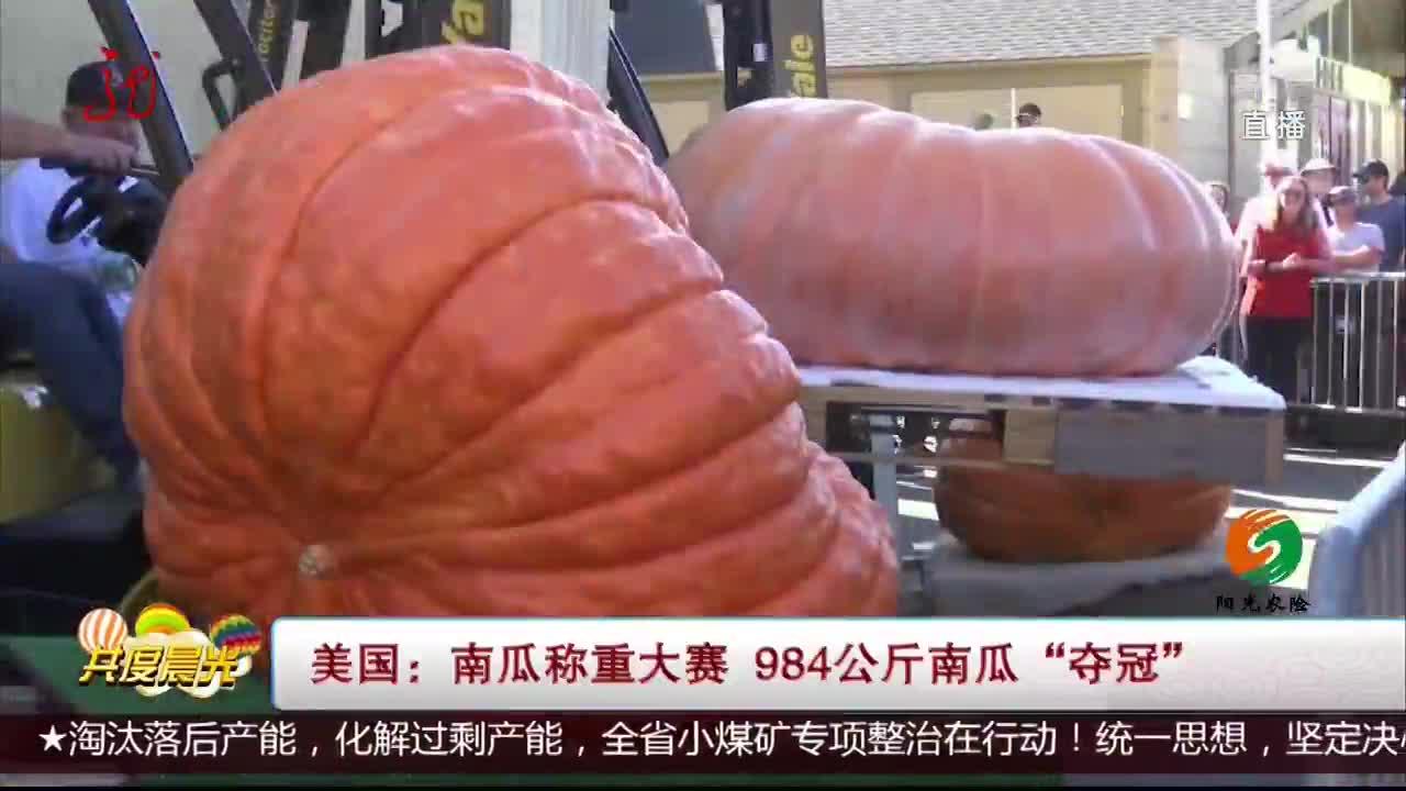 """[视频]美国:南瓜称重大赛 984公斤南瓜""""夺冠"""""""