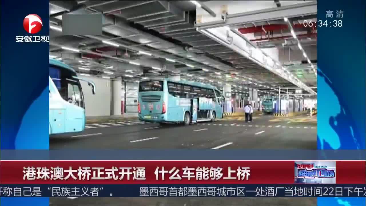 [视频]港珠澳大桥正式开通 什么车能够上桥