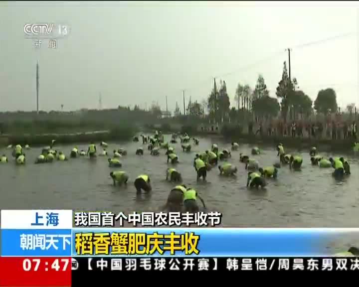 [视频]我国首个中国农民丰收节 上海 稻香蟹肥庆丰收