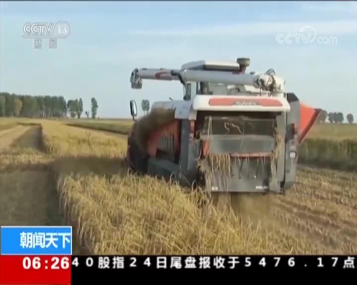 [视频]农业农村部:确立第二批黑土地保护利用试点县