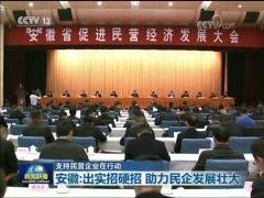 [视频]【支持民营企业在行动】安徽:出实招硬招 助力民企发展壮大