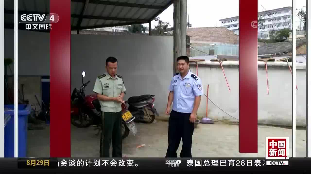 """[视频]50余只小鸡失踪 """"凶手""""竟是凤头鹰"""
