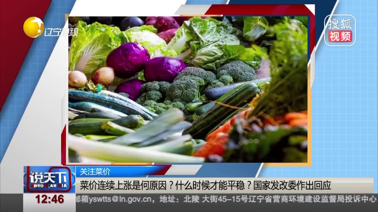 [视频]关注菜价:菜价连续上涨是何原因? 什么时候才能平稳? 国家发改委作出回应
